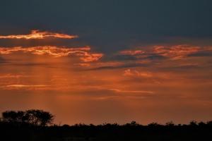 Ondergaande zon in Botswana