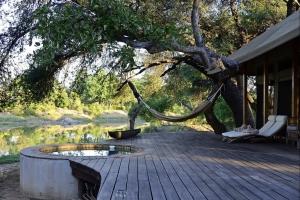 luxe tent aan de limpopo rivier