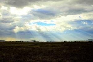 zon breekt door op Serengeti