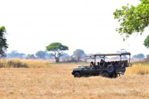 wildlife spotten vanuit open auto