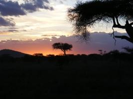 Ondergaande zon in Tanzania