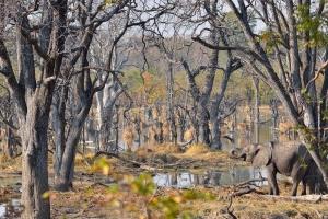 Bijzondere landschappen in en rond de Okavango Delta